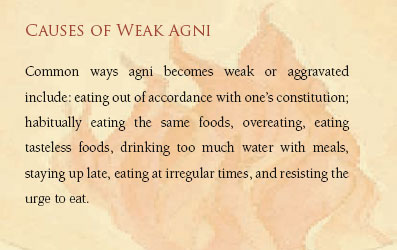 Causes of Weak Agni